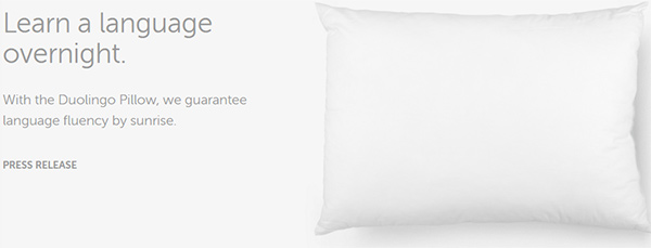 Duolingo Pillow