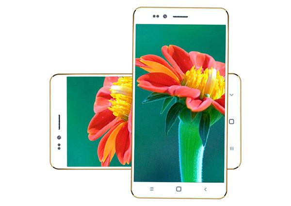 Freedom 251, smartphone economico