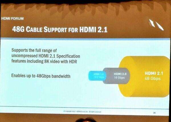 HDMI cavo 48G