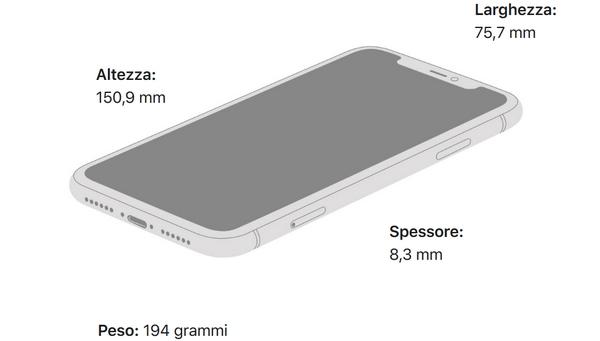 iphone 11 dimensioni
